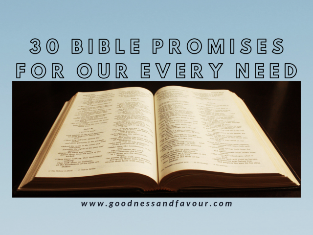 30 Bible Promises for Every Need