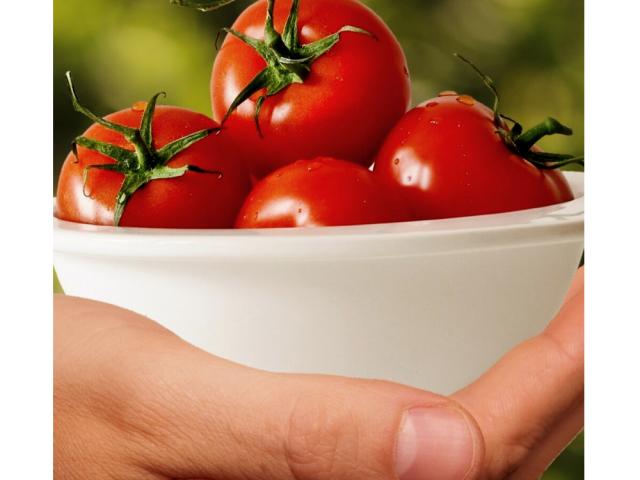 Healthy Eating Basics for Seniors